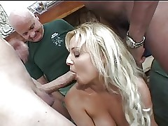 Blondie Federate