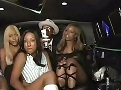 Candace von on touching a limo