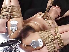 Japanese BDSM Mafficking..